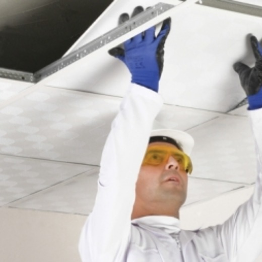 Suspended Ceiling Board